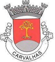 carvalhas.jpg