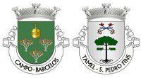 União de Freguesias de Campo e Tamel (São Pedro Fins).jpg
