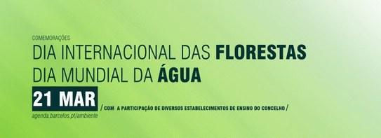 Campanha de sensibilização marca Dia Internacional das Florestas