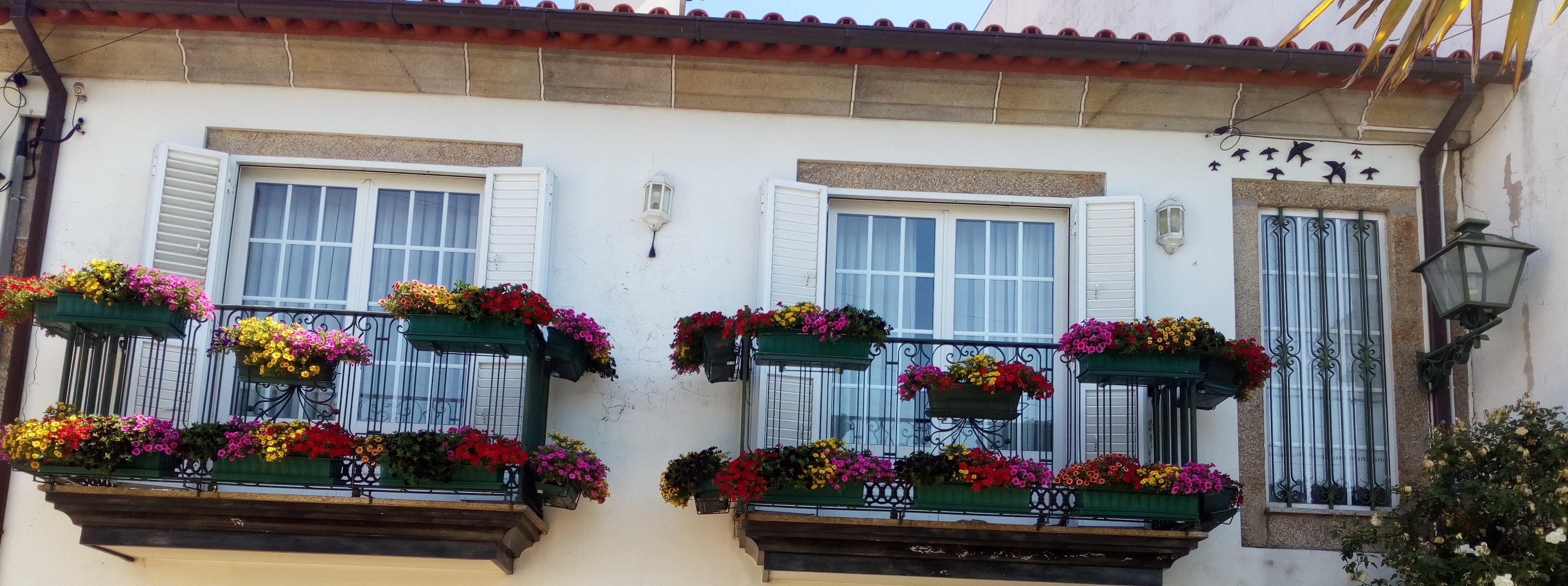Varandas de António Novo, em Barcelinhos, vencem o concurso Barcelos Florido