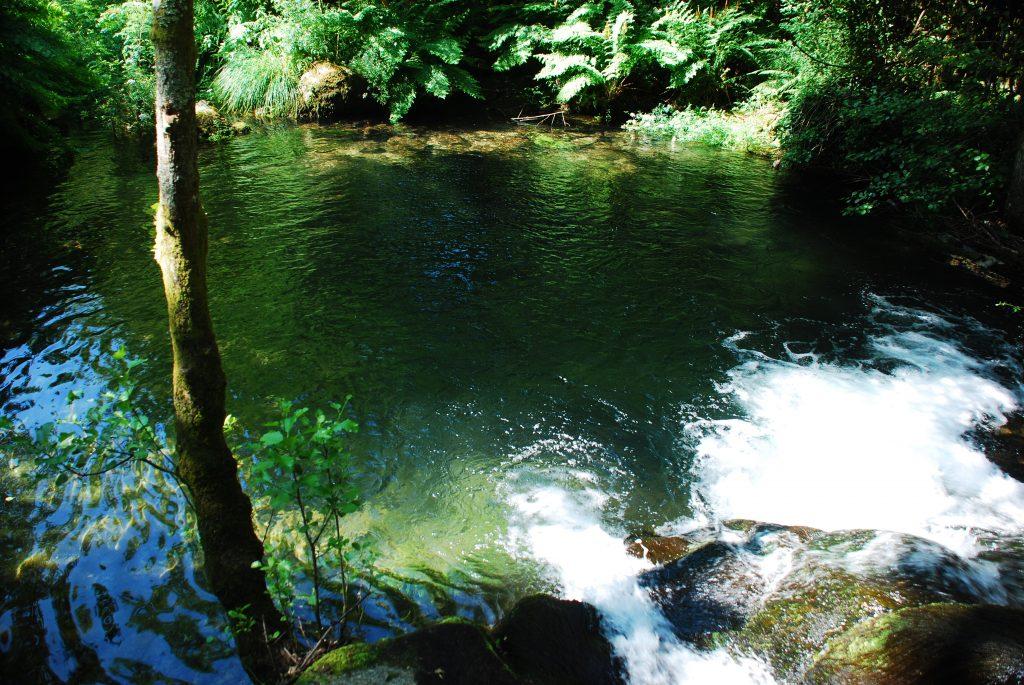 Lagoa de Perelhal