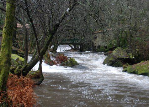 Trilho do Rio Neiva – Alheira/Balugães