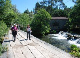 Programa Caminhar para Conhecer Barcelos