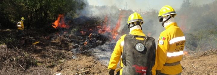 Simulacro de queimada sensibiliza os mais novos para a preservação da natureza