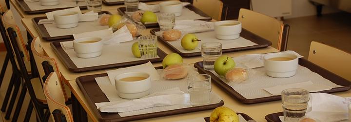 Município promove acções de formação para manipuladores de alimentos e auxiliares de refeitórios