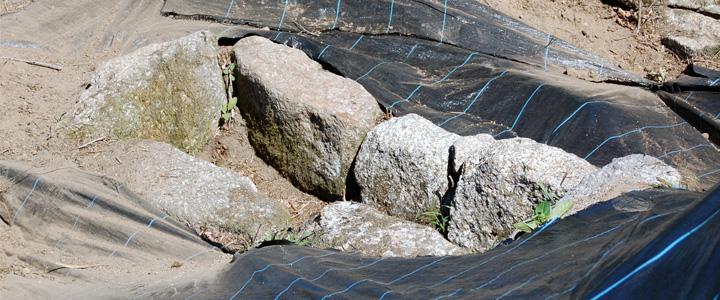 Câmara Municipal promove intervenção arqueológica em necrópole de Panque