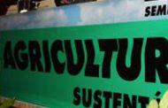 município de barcelos promoveu seminário sobre ...