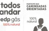 caminhada a favor da liga portuguesa contra o c...