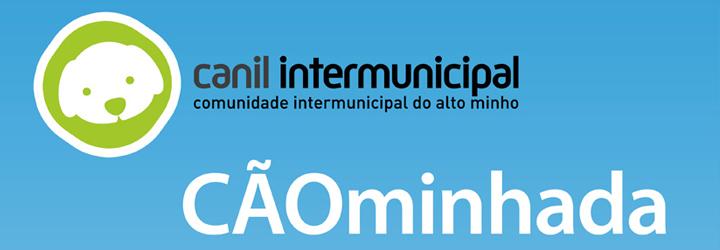 """""""CÃOminhada"""" em Ponte de Lima"""