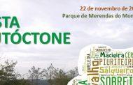 município promove ação de reflorestação com esp...