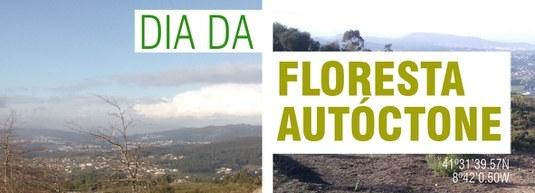 Barcelos comemora Dia da Floresta Autóctone com ação de reflorestação