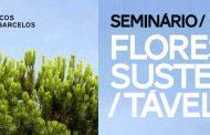 """seminário """"floresta sustentável"""""""