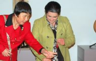 exposição de instrumentos musicais chineses no ...