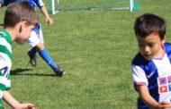 torneio de escolas de futebol junta 275 alunos ...