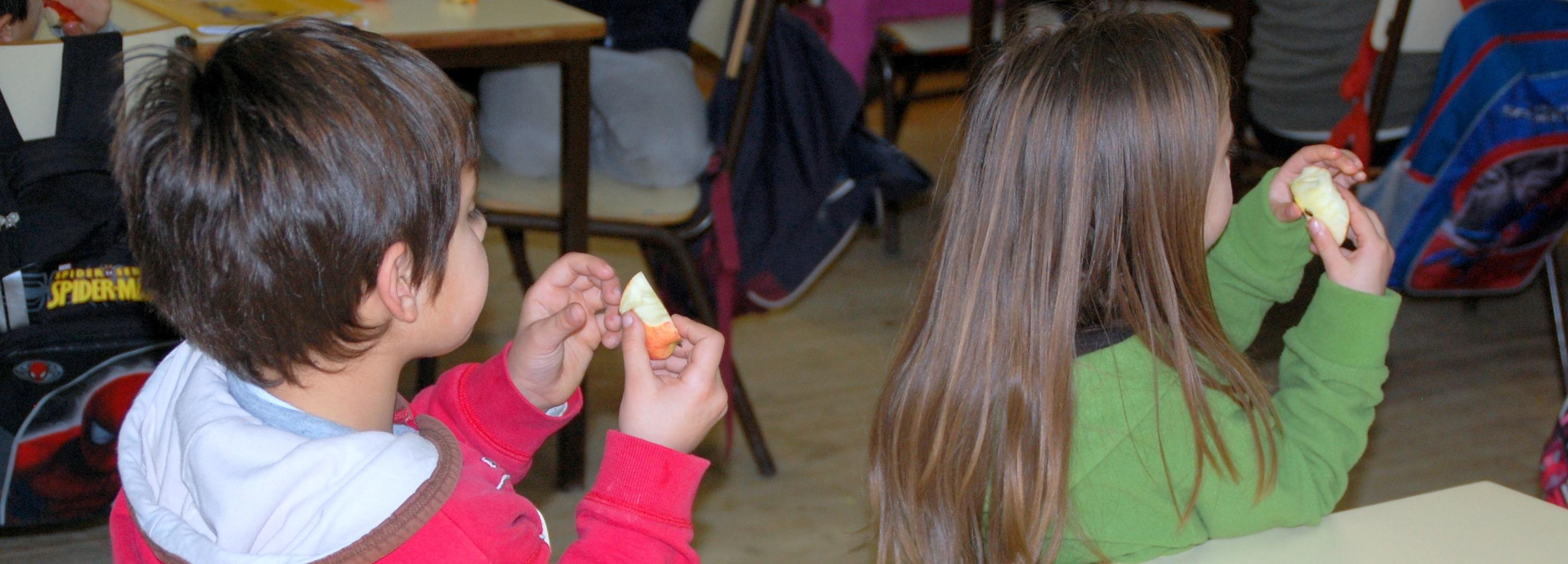 Alunos do 1.º ciclo do concelho de Barcelos voltam a ter fruta escolar