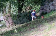 câmara municipal limpa margens do rio cávado