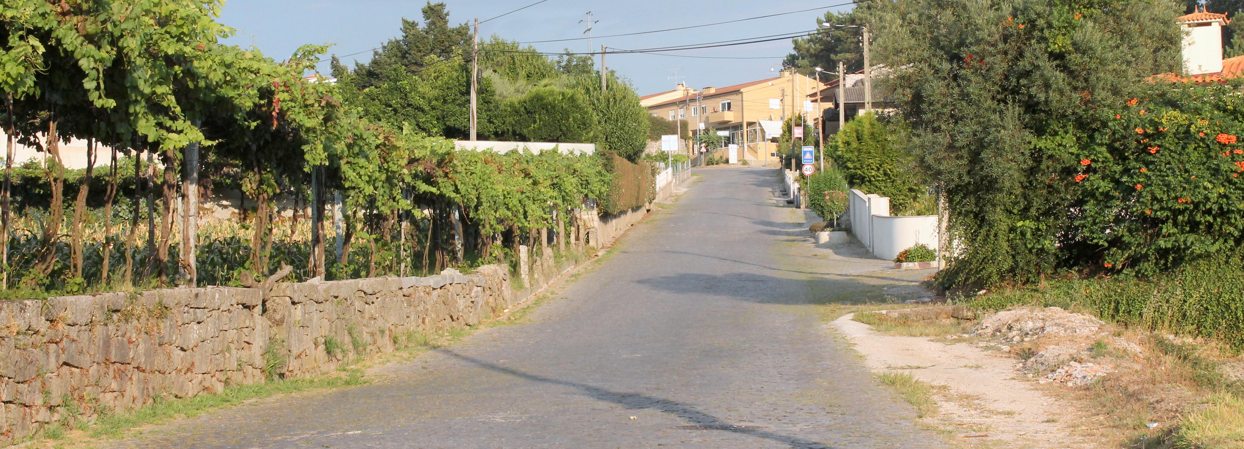 Câmara Municipal abre concurso público para o arranjo da Estrada entre Sequeade e Bastuço