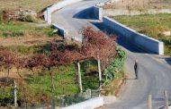 câmara municipal investe quase 130 mil euros na...