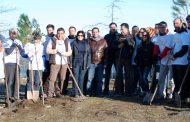 município promoveu ação de reflorestação em aldreu