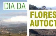 ação de reflorestação marca dia internacional d...