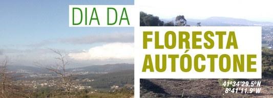 Ação de reflorestação marca Dia Internacional da Floresta Autóctone