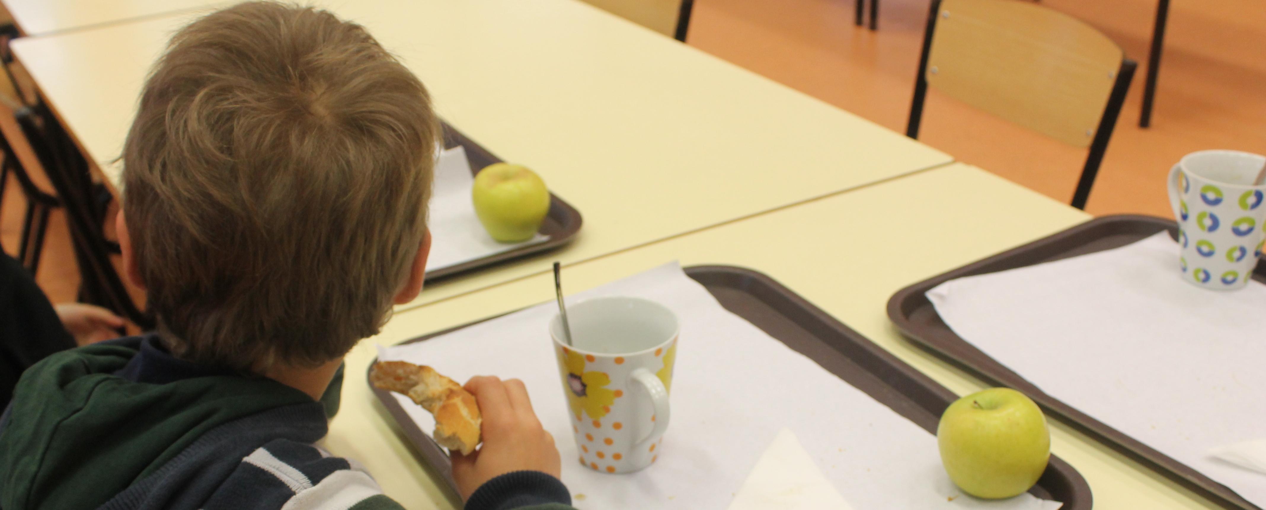 Município fornece pequenos almoços aos alunos e apoia famílias carenciadas