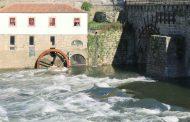 À roda do rio regressa com nova exposição dedic...