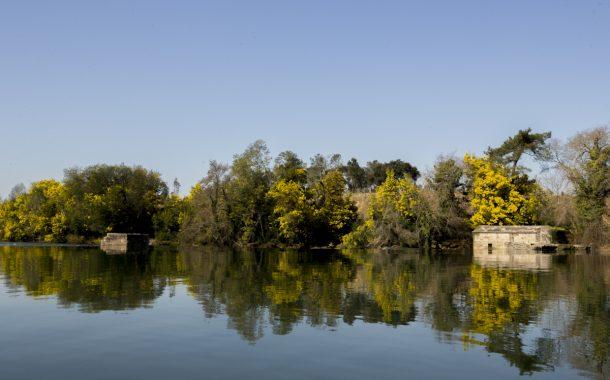 câmara municipal cria seis ancoradouros no rio ...