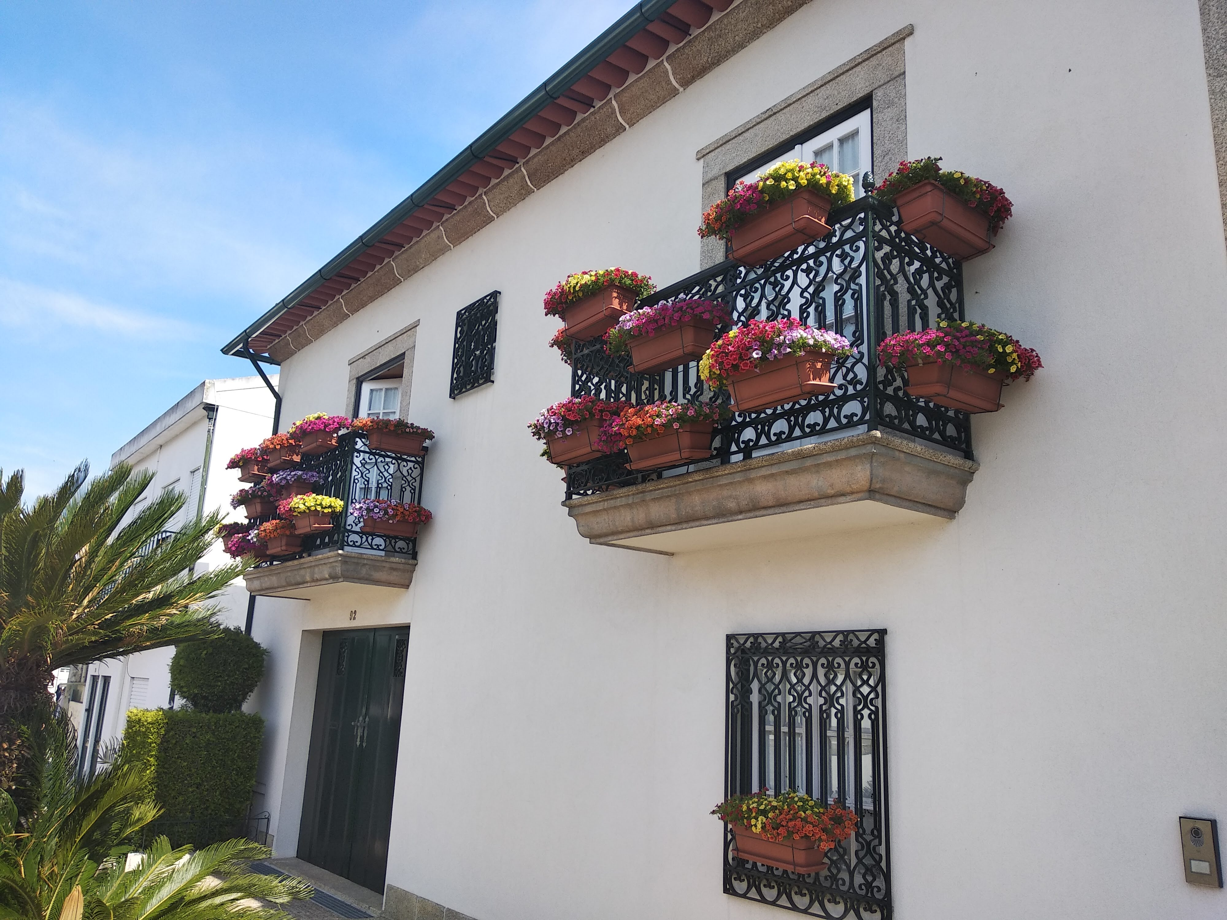 Concurso Barcelos Florido com grande número de participantes