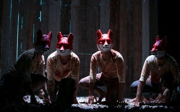 """""""raposos"""" do teatro de balugas distinguido no f..."""
