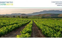 recenseamento agrícola 2019